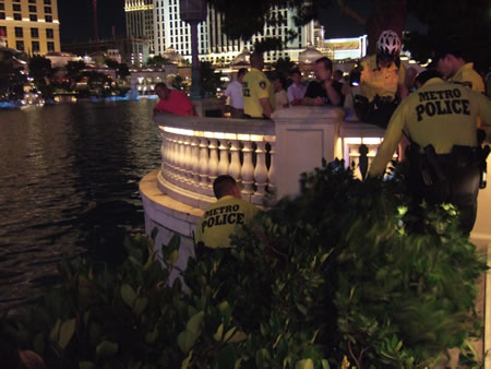 Man being rescued from Bellagio Fountains after falling into the lake from a tree
